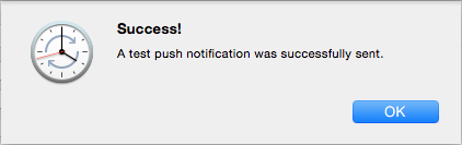 Push Notification successfully sent