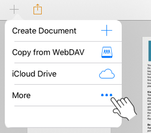 More document options in Pages